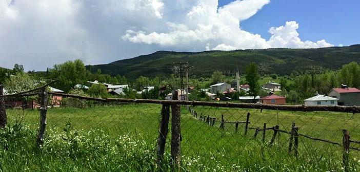 Erzincan Refahiye Biçer Köyü