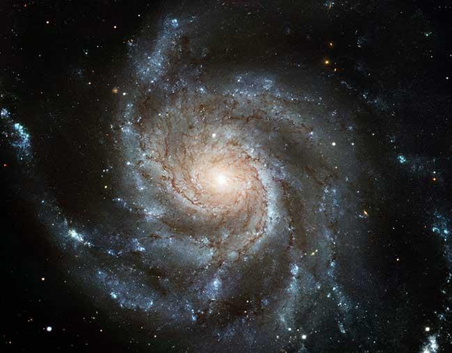 Pinwhell Galaxy